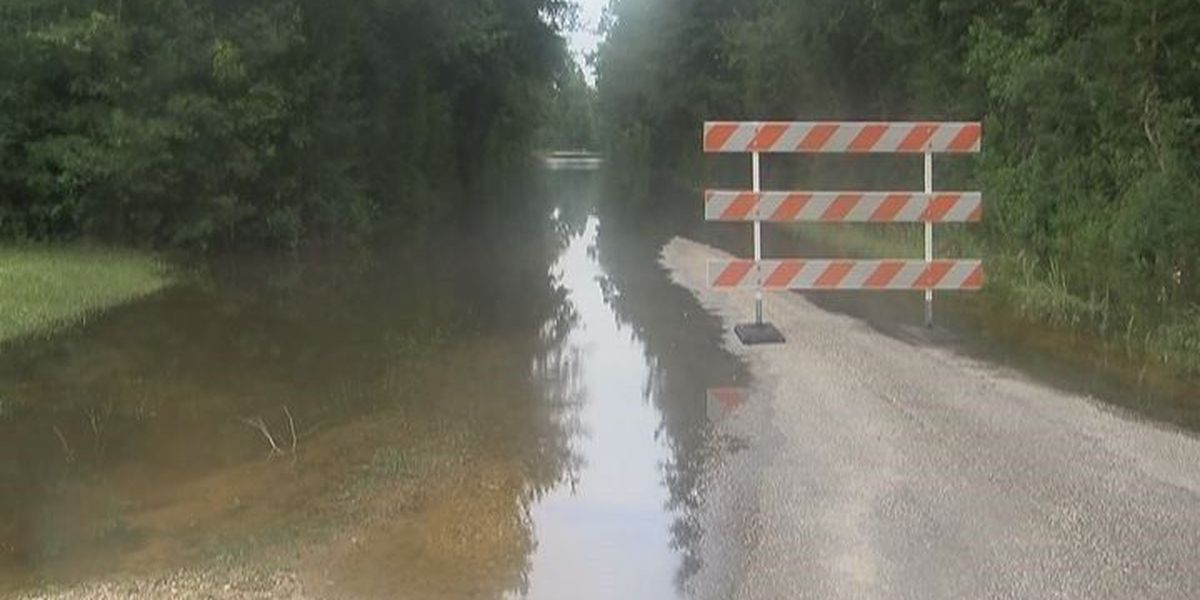Jasper Co. officials assess damage caused by TD Bill
