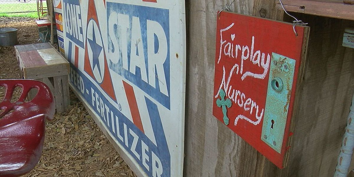 East Texas plant nursery owner working to recover from effects of winter storm