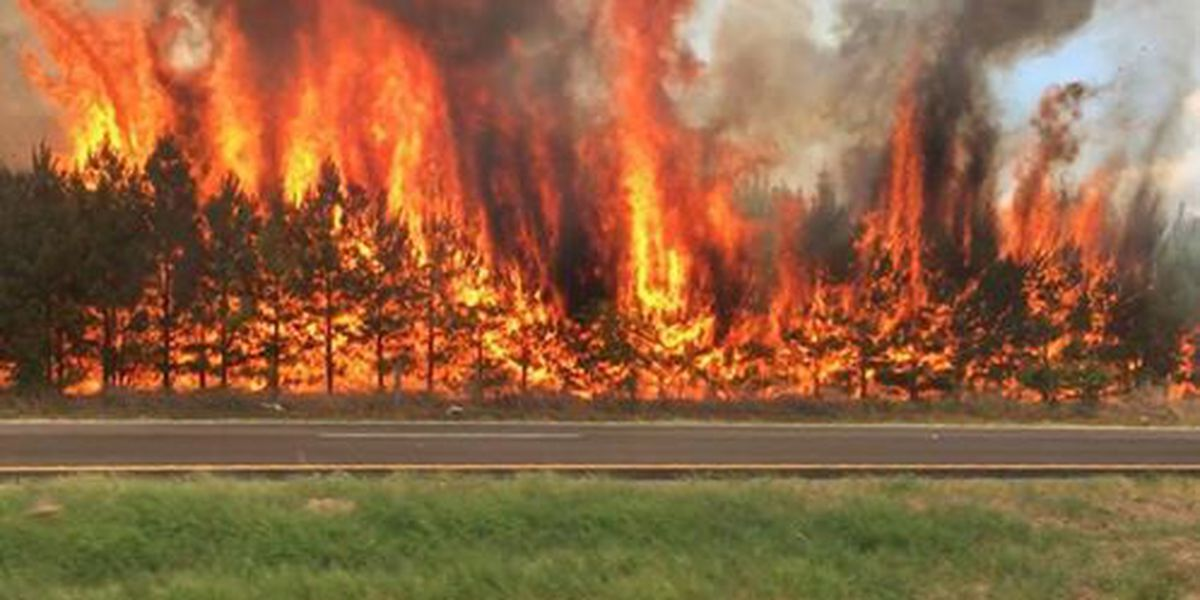 VIDEO: Crews battle 15-acre fire in Cherokee County