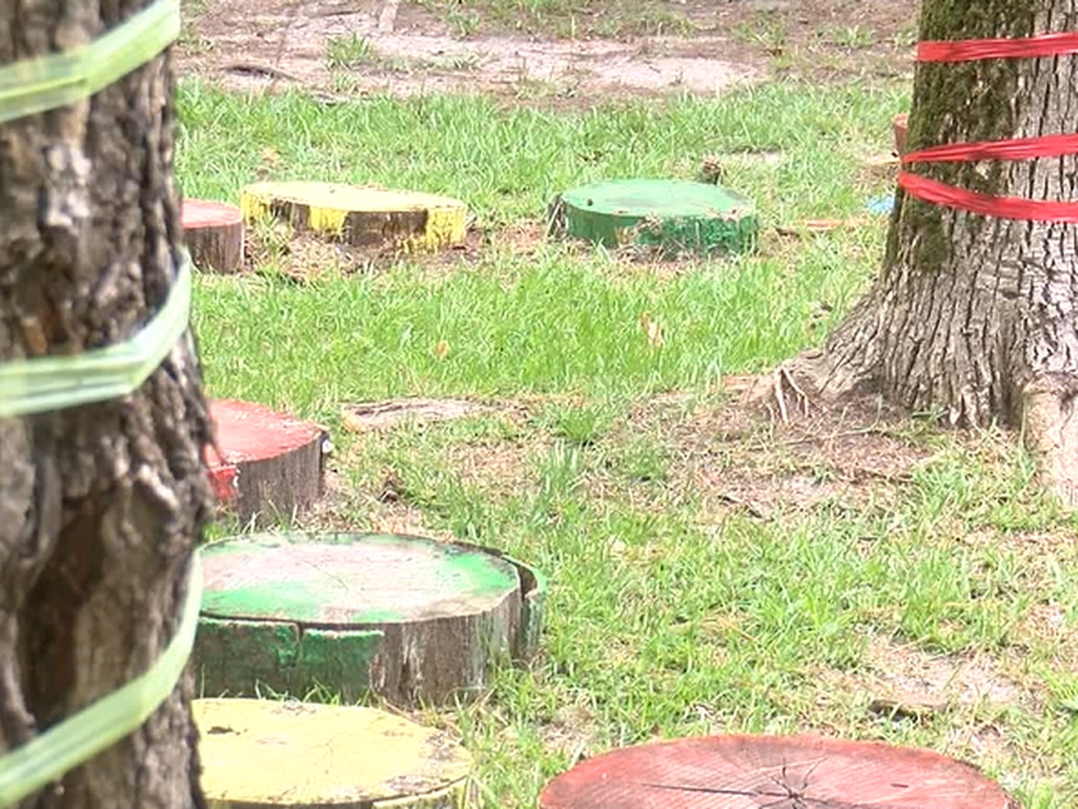 Texas Forestry Museum: Precautions in place for kids summer camp