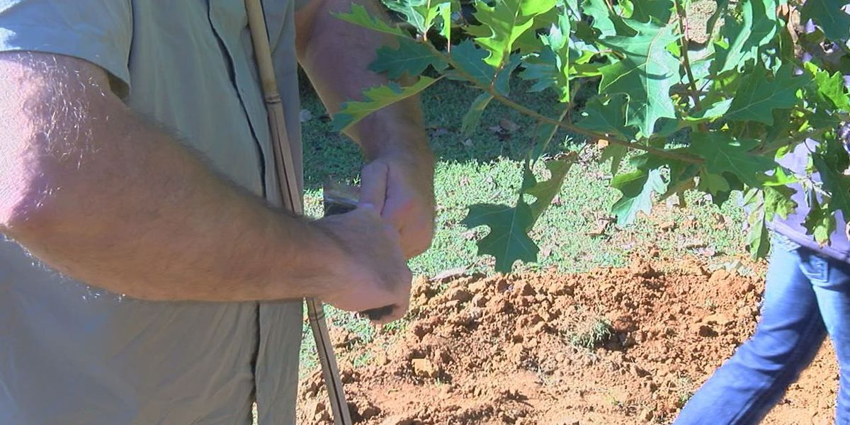 Community members come together for Make a Difference Day in Nacogdoches