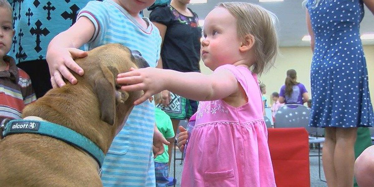 Nacogdoches library adds therapy dog to 'Story Time'