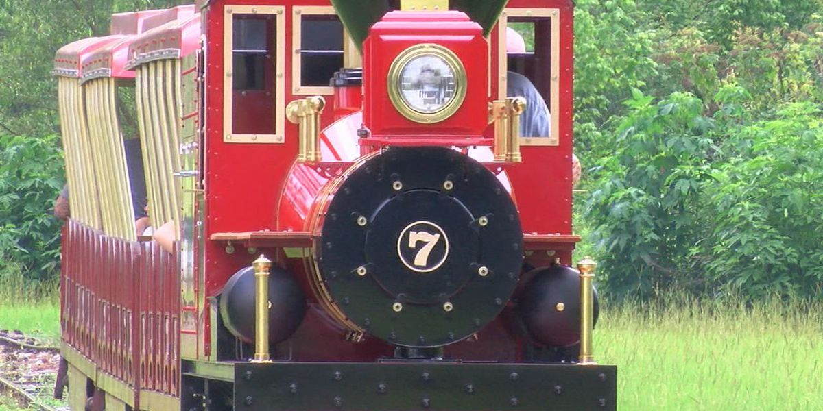 Longtime lover of train builds new Z&OO engine