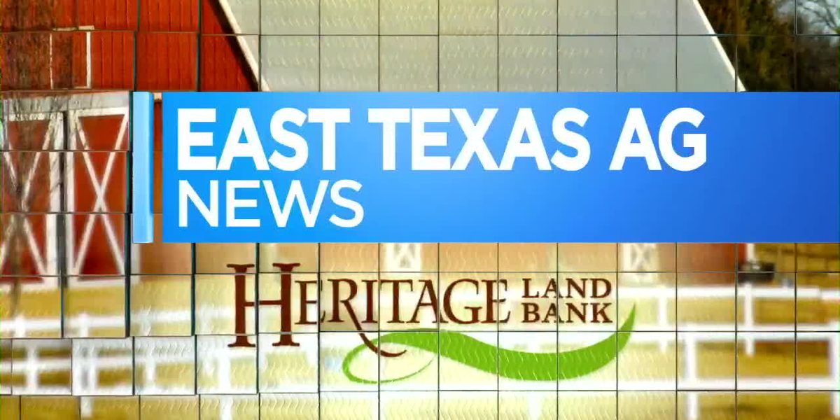 East Texas Ag News: How to better care for your pasture