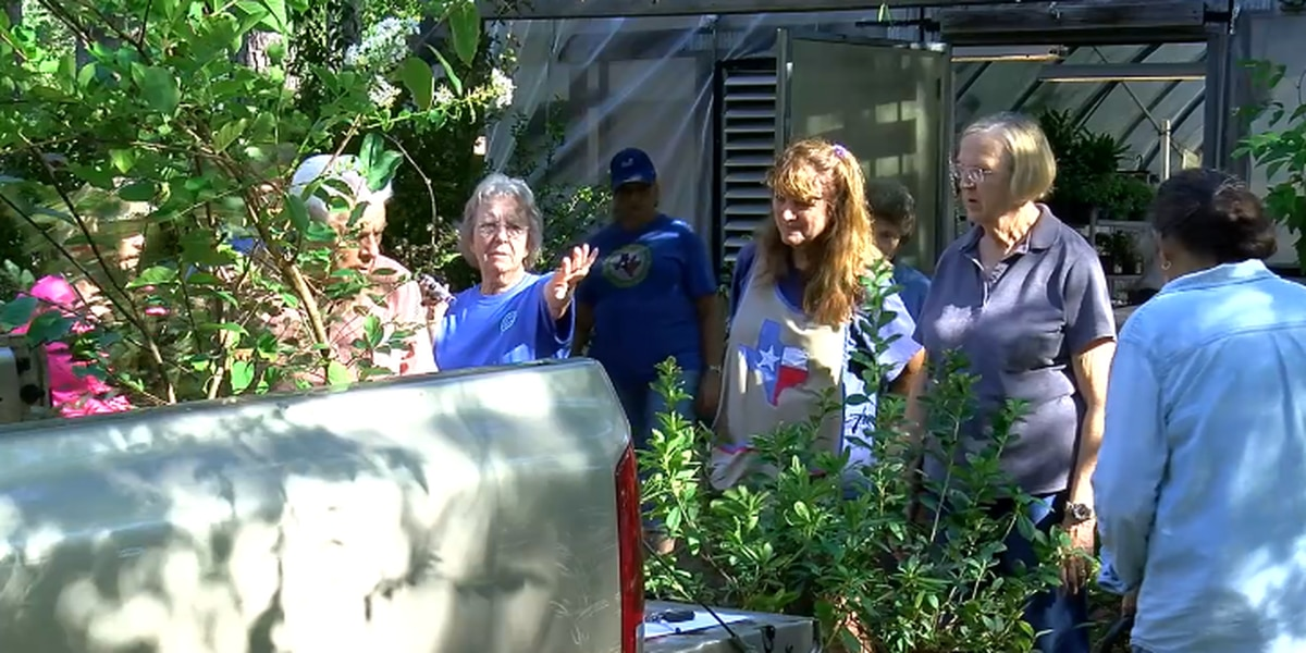 Roots of Angelina County Master Gardeners annual plant sale set in education